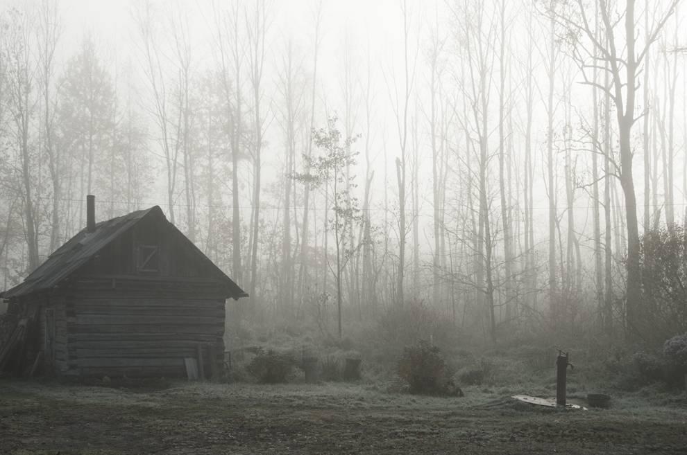 Vanishing by Yanina Shevchenko